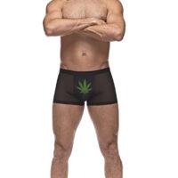 private screening underwear